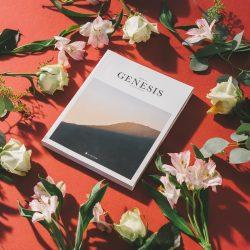 Genesis printed book by flowers on red surface